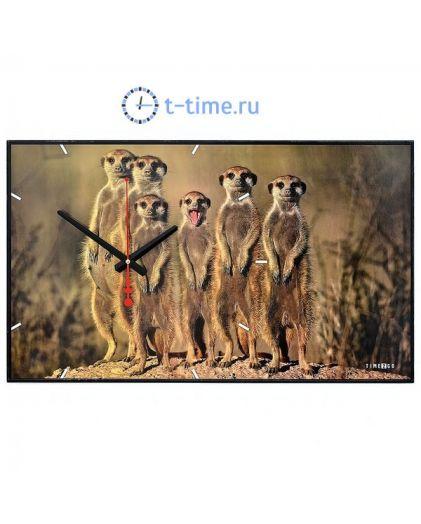 "Time 2 go 1033 ""Сурикаты"""